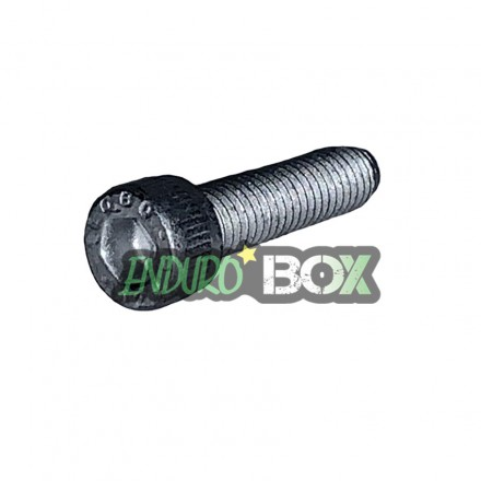 Vis BTR M5 x 20 mm GASGAS Enduro box