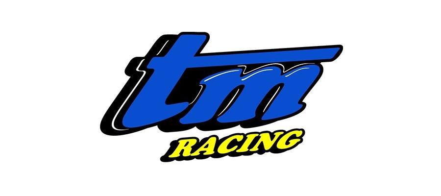Plaquettes de frein TM