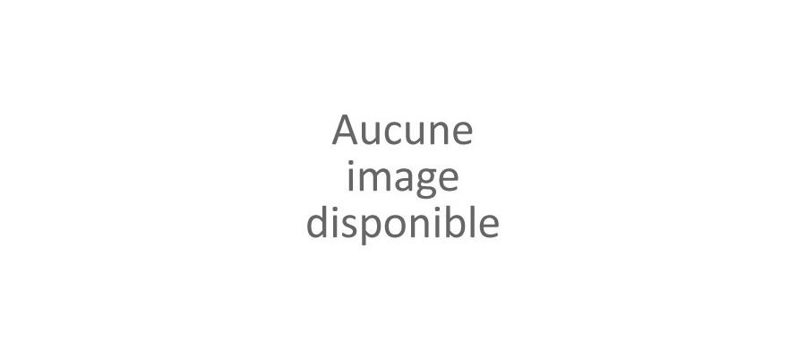 Piston / Segments HUSABERG